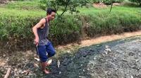 Tại CCN giấy Phú Lâm, Bắc Ninh: Ở nơi không có sinh vật nào sống nổi, nhưng chính quyền chưa... xử lý được ai