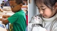 6 bí mật trong hệ thống giáo dục Nhật Bản khiến các quốc gia khác trên thế giới ngưỡng mộ