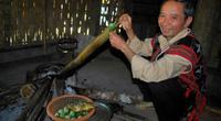 Kể chuyện làng: Lên Trường Sơn ăn món cà đắng của người Cơ Tu