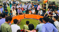 Ninh Bình: Thót tim với những màn đấu nảy lửa tại Hội thi chọi gà - Lễ hội Hoa Lư