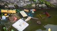 Nước hồ Tây ô nhiễm, Hà Nội yêu cầu các Sở rốt ráo vào cuộc, cải thiện môi trường