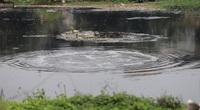 Ô nhiễm tại làng giấy Phong Khê: Người dân Bắc Giang bức xúc vì nước sông Cầu tiếp tục bị ô nhiễm