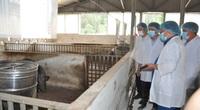 """Lào Cai: """"Đại bản doanh"""" nuôi con đặc sản thu 10 tỷ đồng mỗi năm ở huyện Bắc Hà"""