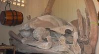 Quảng Bình: Làng biển anh hùng có Ngư Linh miếu thờ 2 bộ xương cá voi to lớn nhất Việt Nam