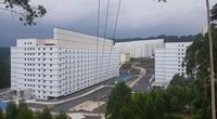 Chuyện lạ có thật: Xây khách sạn cao 9 tầng, lắp thang máy xịn sò chỉ để nuôi... lợn
