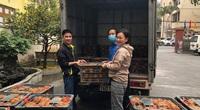 Giúp nông dân Hà Giang tiêu thụ gần 700 tấn cam sành