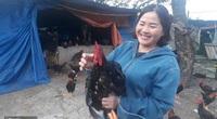 """Lai Châu: Nuôi """"lung tung"""" cả ngàn con gà, con vịt, con ngan, một nông dân vùng cao có của ăn của để"""