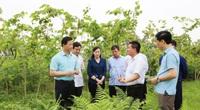 Sẽ tổ chức hội nghị xúc tiến đầu tư tỉnh Bắc Ninh vào tháng 5/2021