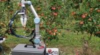 Robot siêu đỉnh ra mắt, người nông dân nhàn hạ