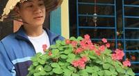 """TT-Huế: Từ yêu hoa chua me đất quê nhà, """"anh trai mưa"""" trồng 100 loài hoa lạ """"cùng họ khác tên"""""""