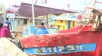 Quảng Ngãi: Ngư dân chủ động phòng ngừa dịch Covid-19