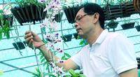 Tiền Giang: Lạc vào vườn hoa lan 80.000 giò ở TP Mỹ Tho, có nhiều cây hoa lan giả hạc đột biến