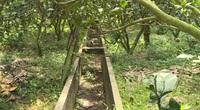 Đồng Tháp: Được bao bọc bởi sông Tiền nhưng Cù lao Long Khánh đang thiếu nước ngọt