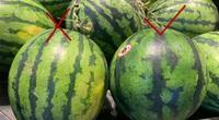 4 mẹo cực hay và cực dễ giúp bạn chọn dưa hấu ngon ngọt, không cần gõ vào vỏ