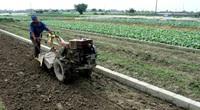"""Những cuộc """"cách mạng"""" trên đất lúa kém hiệu quả (bài 3): Đất hoang cỏ rậm rì bỗng thành ruộng """"đẻ"""" trăm triệu"""