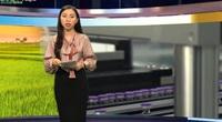 Bản tin Thời sự Dân Việt 14/5: Việt Nam tiếp nhận gần 1,7 triệu liều vắc xin Covid-19, sẵn sàng tiêm vắc xin đợt 3