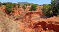 Sống ở những sa mạc cát lớn nhất Việt Nam (kỳ 1): Cát - nguồn sáng tác nghệ thuật bất tận…