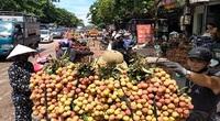 Khoảng 100 tấn vải thiều Việt Nam sẽ lên kệ siêu thị Úc