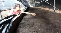 Đắk Lắk: Nuôi loài ăn bẩn, ở bẩn nhưng giúp anh nông dân trồng cây gì, nuôi con gì cũng chuẩn sạch