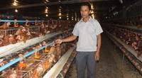 Dạy nghề hiệu quả, tỉnh Hải Dương có nhiều nông dân giỏi