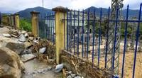 Bình Định chuyển hơn 25ha rừng tự nhiên... vì dự án thủy điện