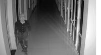 Trà Vinh: Người dân trình báo bị trộm vào nhà lấy mất 65 lượng vàng SJC và 35.000 USD