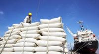 Cơ hội nào cho gạo Việt Nam khi tham gia Hiệp định Thương mại tự do Việt Nam - Vương quốc Anh
