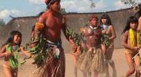 Brazil: Bộ lạc Mehinaku có cách chinh phục phụ nữ thật thú vị