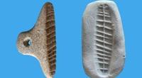 Phát hiện con dấu tiền sử 7.000 năm tuổi được khai quật ở Israel