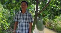 """An Giang: """"Liều"""" trồng mít Thái chung vườn với xoài, ai ngờ hái 30-40 tấn trái, vẫn bán hết"""