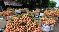 Không thể sang thu mua, thương nhân Trung Quốc vẫn chuyển tiền gom 30.000 tấn đặc sản nổi tiếng của Việt Nam