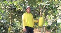 Vựa lúa sống cùng nỗi lo cây - con mới (Bài cuối): Xây dựng chiến lược cho các sản phẩm chủ lực