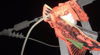 EVN HANOI khuyến cáo người dân không thả diều gần hành lang an toàn lưới điện