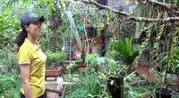Thanh Hóa: Trồng hoa phong lan rừng, treo đầy nhà, sơn nữ còn mong muốn điều ai nghe cũng bất ngờ