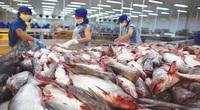 Vì sao ngành thủy sản càng xuất khẩu càng lỗ?