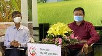 Tư vấn trực tuyến – một cách làm hay để chuyển giao kỹ thuật canh tác cho nông dân trồng lúa vùng ĐBSCL