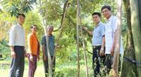 Nông dân tỉnh Đồng Nai rủ nhau trồng sầu riêng sạch tiêu chuẩn VietGAP, bán cháy hàng