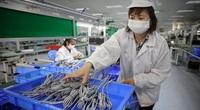 Bắc Ninh: Không sử dụng lao động đang cách ly, tỉnh khác để phòng dịch Covid -19