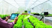 Hội NDVN-Hiệp hội Nông nghiệp số Việt Nam: Ứng dụng số hoá kết nối tiêu thụ nông sản cho nông dân