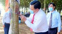 Trung Quốc gom lượng khổng lồ một loại nông sản của Việt Nam, cổ phiếu ngành này rủ nhau tăng giá