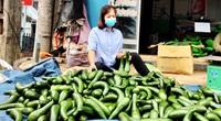Tây Nguyên: Rau xanh, bí đỏ, mít Thái, trái bơ... ồng loạt rớt giá, ùn ứ chất chồng