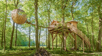 """Loạt nhà trên cây """"độc nhất vô nhị"""" đẹp đến không ngờ"""