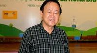 Hà Nội rút ra bài học gì qua việc trồng thử nghiệm cây phong lá đỏ đường Trần Duy Hưng?
