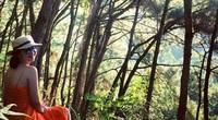 """Hà Nội: Mở cửa là rừng, trải nghiệm thú vị khiến du khách mê mẩn khi muốn đi ở """"ẩn"""""""
