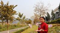 Lai Châu mở cửa trở lại hoạt động dịch vụ kinh doanh, du lịch nội địa