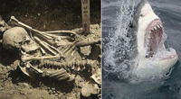 Phát hiện bất ngờ về người đàn ông bị cá mập cắn đứt lìa bàn tay cách đây 3.000 năm