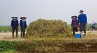 Biến rơm rạ thành phân hữu cơ, nhà nông ngoại thành Hà Nội hưởng lợi kép