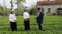 Hà Nội: Hơn 1.600 mô hình biến miền quê ngoại thành trở nên xanh, sạch, đẹp