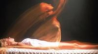 Mèo đen hồi sinh xác chết: Hiện tượng bí ẩn và lời giải khoa học