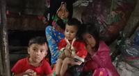 Hà Giang: Bà nội 72 tuổi nuôi 4 cháu mồ côi cha